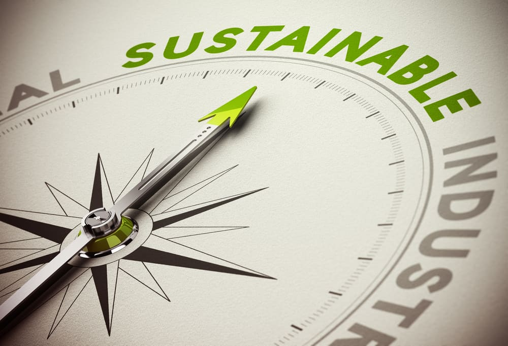 Sustainability VS. Eco Friendly