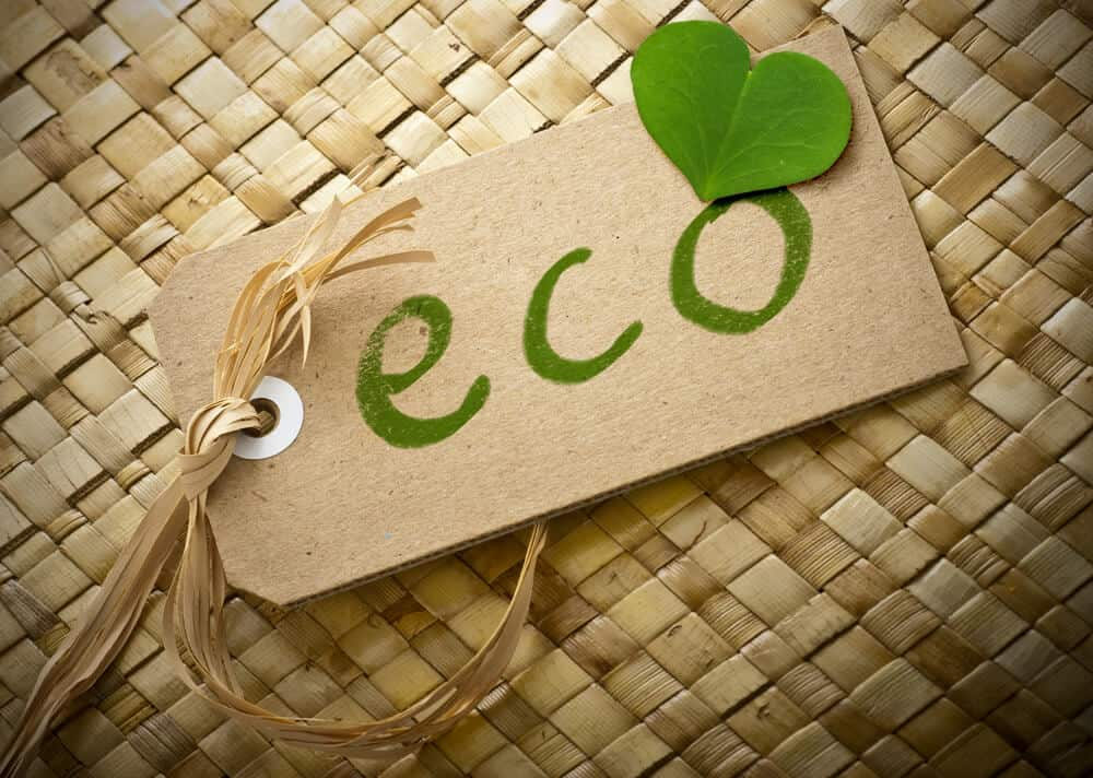 Does Eco-Friendly Mean Non-Toxic?