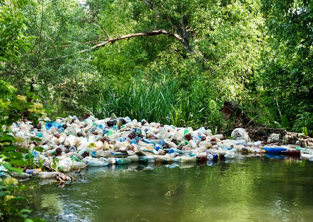 How Is Non Biodegradable Waste Harmful To The Environment?