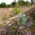 Is Plant Based Plastic Compostable?