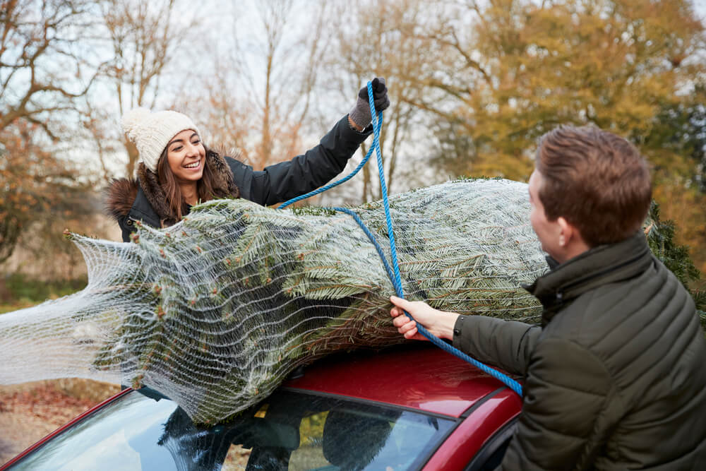 Is Christmas Tree Netting Recyclable