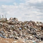 Why Biodegradable Products Are Bad For Landfills