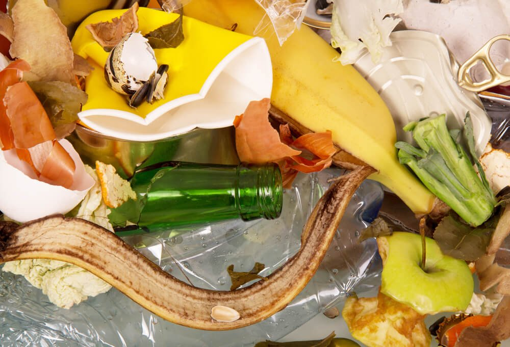 Are Oxo Biodegradable Plastics Harmful to The Environment?